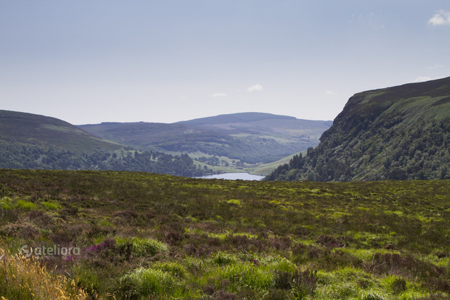 Wicklow Mountains Maciej Frolow #222846