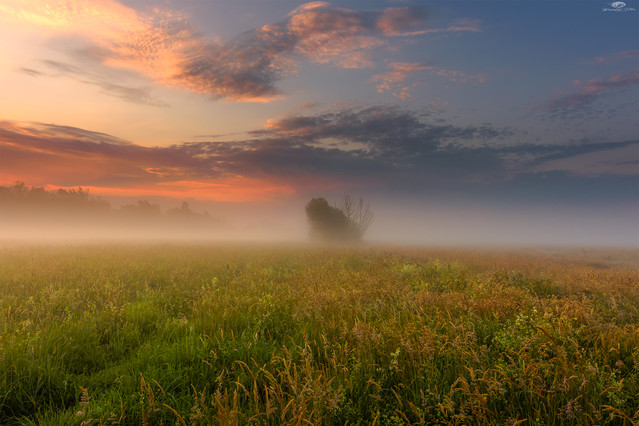 Happiness is fleeting. It envelops us like fog and escapes like