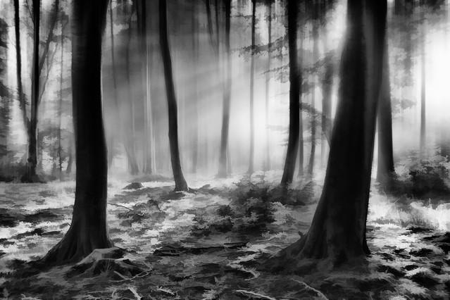 Poranne mgły #14 Sławek Rezerwa #326693