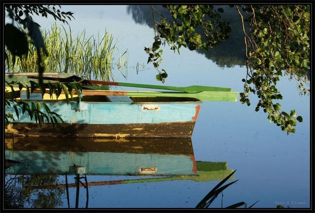 Jezioro Cichowo o poranku olo122 #223566
