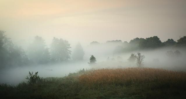 Mgła o świcie Krzysztof Tollas #303322