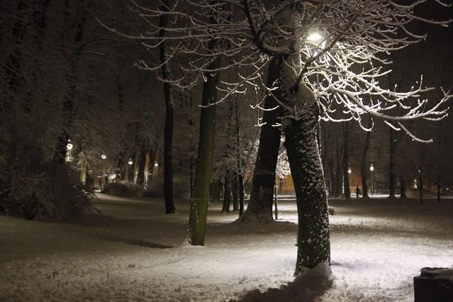 Zima w Rawiczu Włodzimierz Jędrzejczak #302492