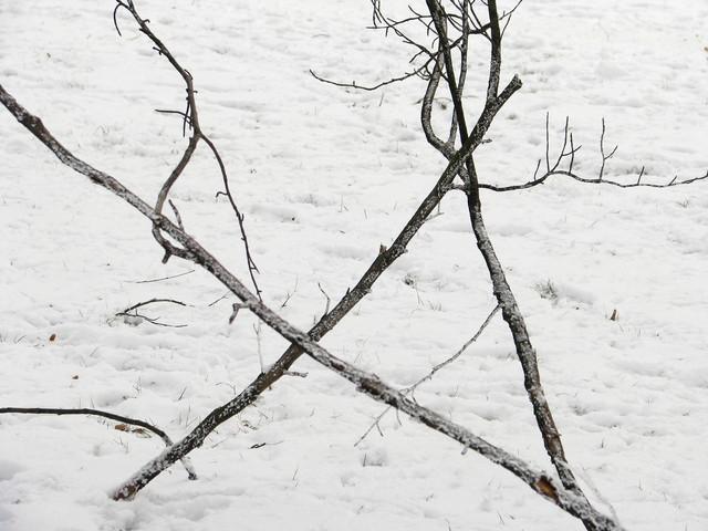 Zimowe w Rawiczu z wczoraj. riftia #302575