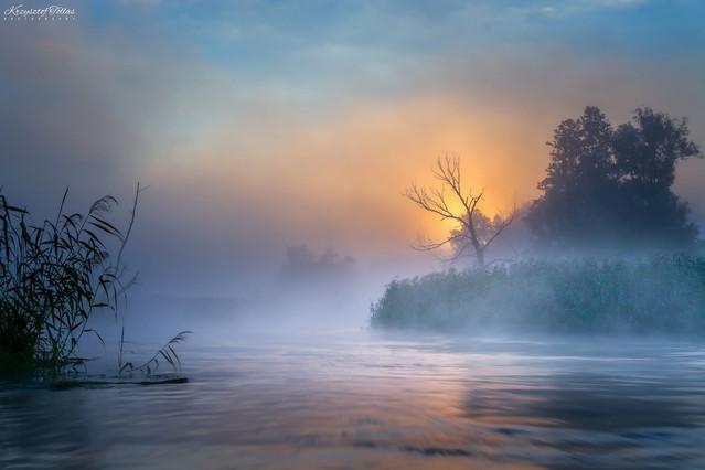 Wiosłując przez mglisty poranek. Krzysztof Tollas #317890