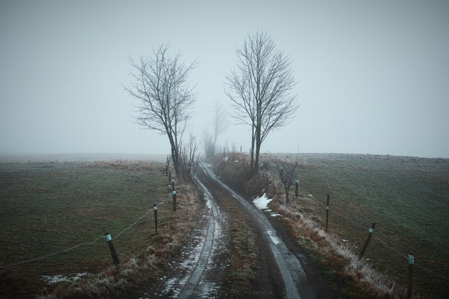 MariuszFotografia #315348