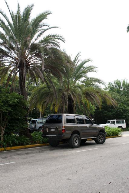 Nasz transport. Safari Jeep - Wyspa Margarita - Wenezuela 2011.