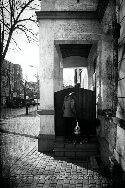 Katarzyna Sypniewska #314303