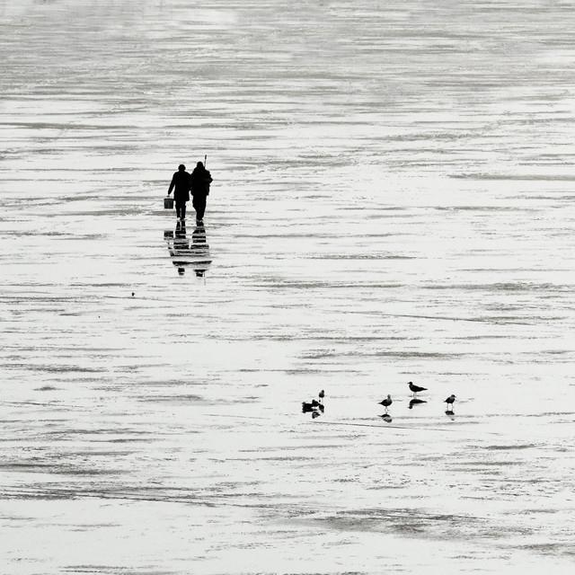 na ryby, na grzyby.... Stanisław Hawrus #314563