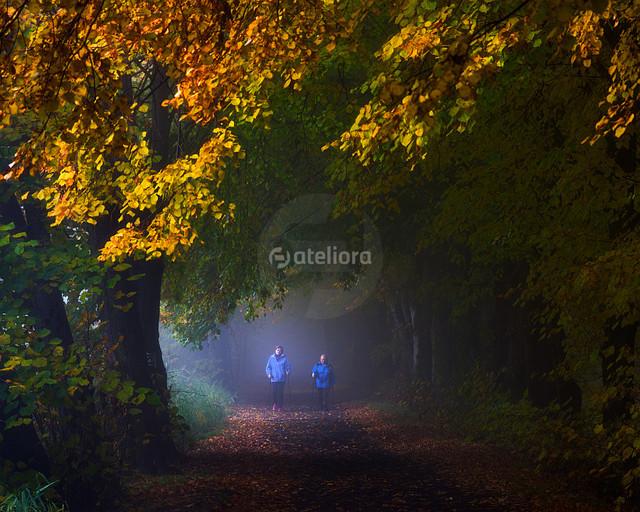 ...jesienny spacer... GrzegorzM #285049