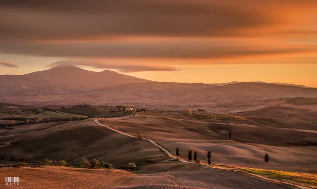Tuscany Ryszard Lomnicki #310274
