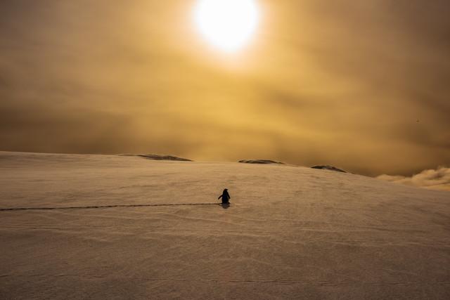 Antarctica Jacek Pióro #324821