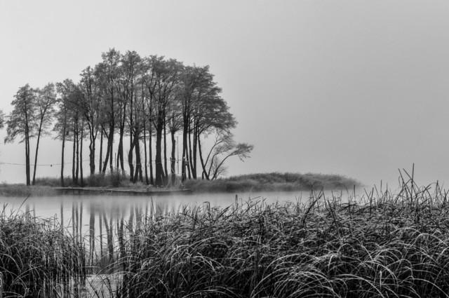 MariuszFotografia