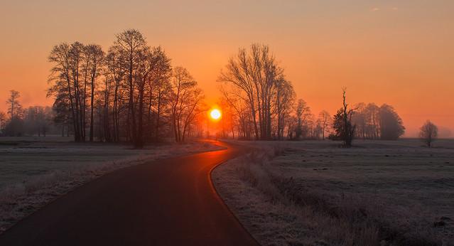 W stronę słońca Pawel Plucinski #303099