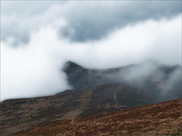 bieszczadzkie mgły broonzy #330475