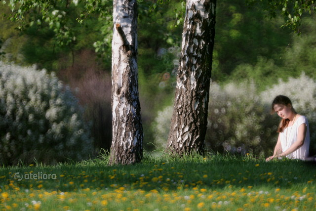 wiosną w parku... Anka Bujniewicz #211693