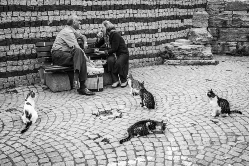 A.BOGUSZEWSKA|istanbul