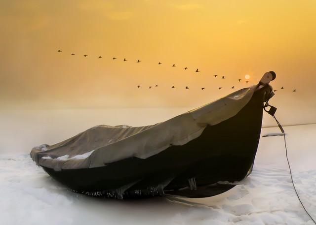 Łódeczka Aneta Konik #290343