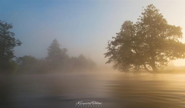 Rzeka Gwda w porannym świetle Krzysztof Tollas #321301