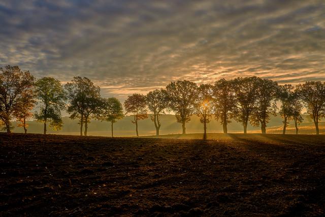 Jesienny poranek Zuławy JAN SIEMINSKI #320371