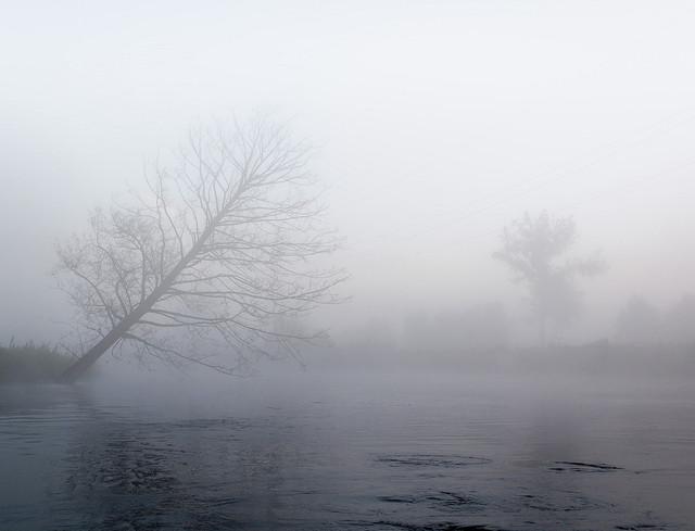 Mglisty poranek nad rzeką Krzysztof Tollas #317828