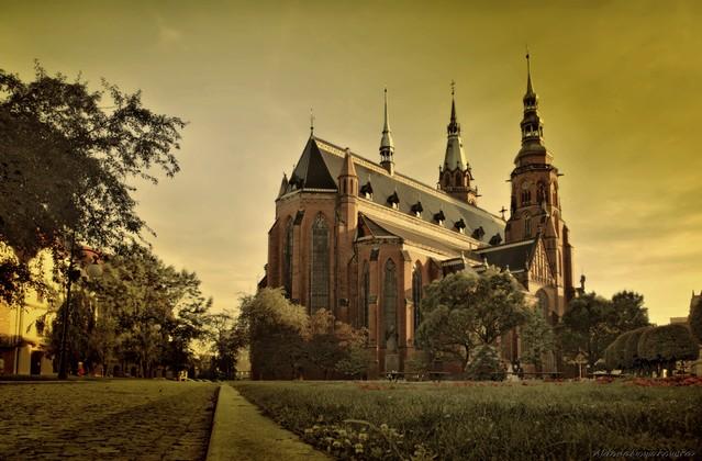 Aldona Nowakowska Plac Katedralny