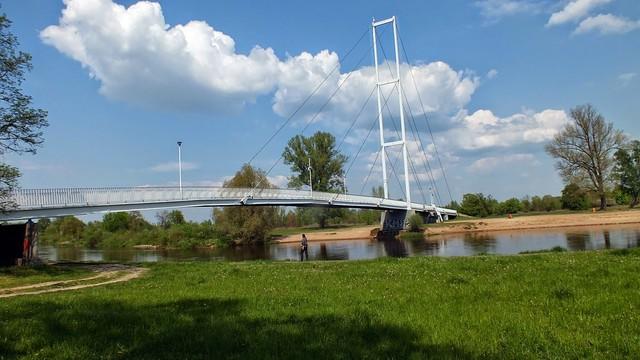 Rzeka Warta Picasa #311849
