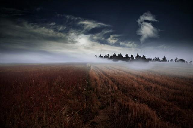 Vviktoria Gdy opadnie mgła...