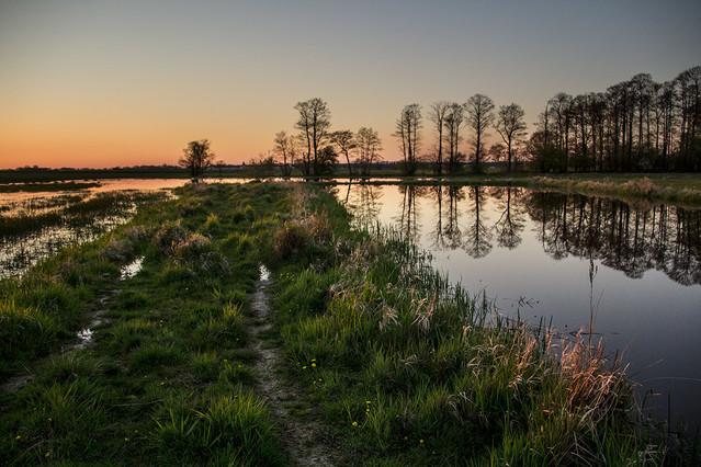 Jerzy Kowalski zalane łąki o zachodzie