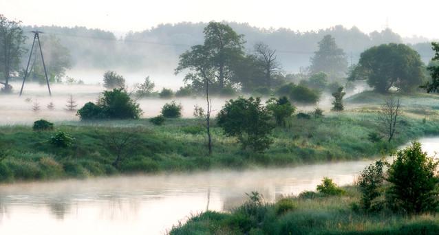 Rzeka Gwda otulona poranną mgłą. Krzysztof Tollas #330081