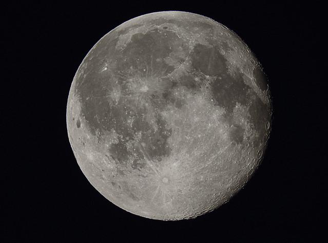 Witman Polowanie na księżyc