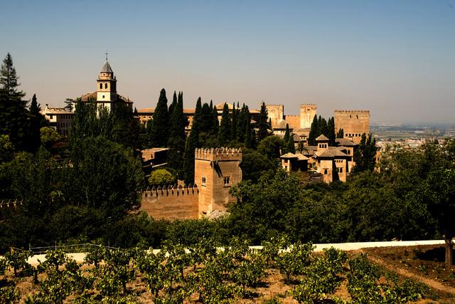 Alhambra Dariusz Wojtala #309097