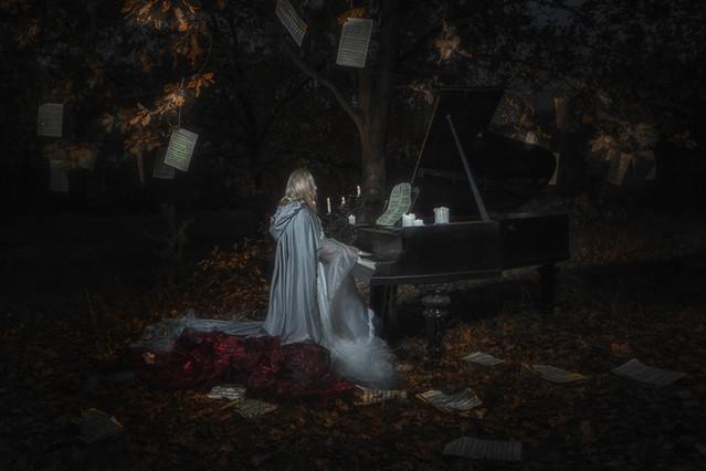 koncert jesienny... PRZEMEK KIJOWSKI -AUTOR #320738