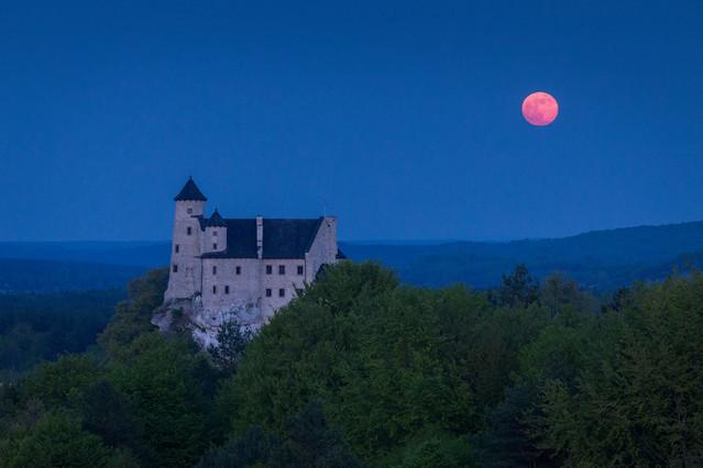 Kwiatowy Księżyc Marcin Rydzewski #330879