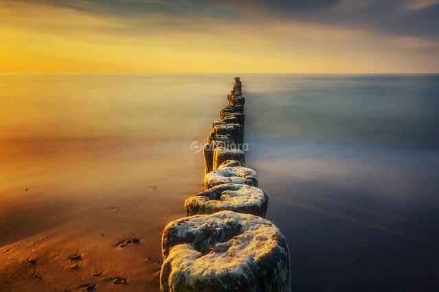 Nad Bałtykiem Grzegorz Moroń #328051