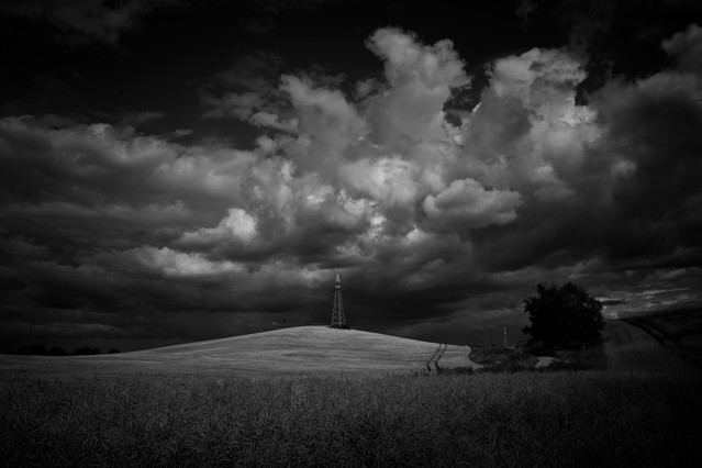 MariuszFotografia #317030