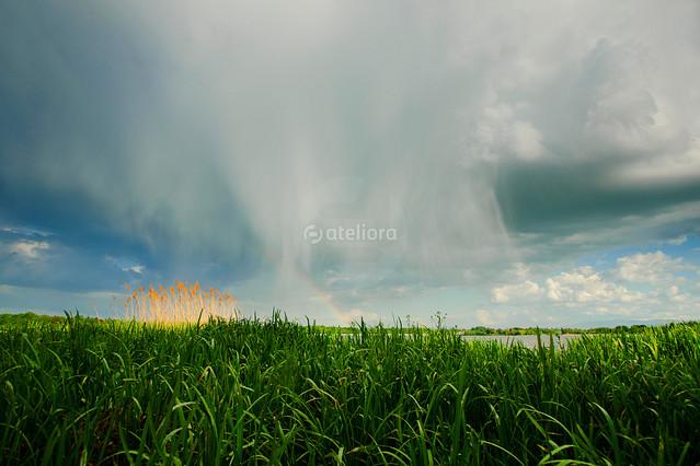 GrzegorzM ...deszczowo...