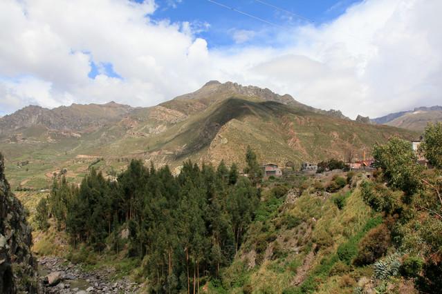 Chiway. Peru. Chiway. Peru. Piotr Schmidt #103861