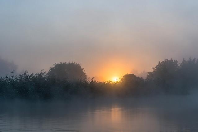 Daybreak Krzysztof Tollas #317829