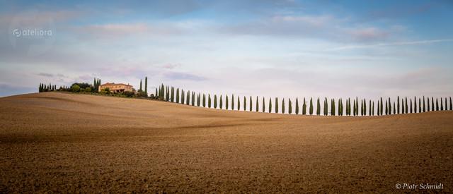 Toskania. IT. Piotr Schmidt #319814