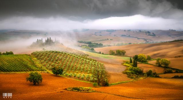 Tuscany Ryszard Lomnicki #310093