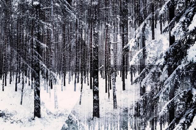 zimowa iluzja Kasia Rubiszewska #313277