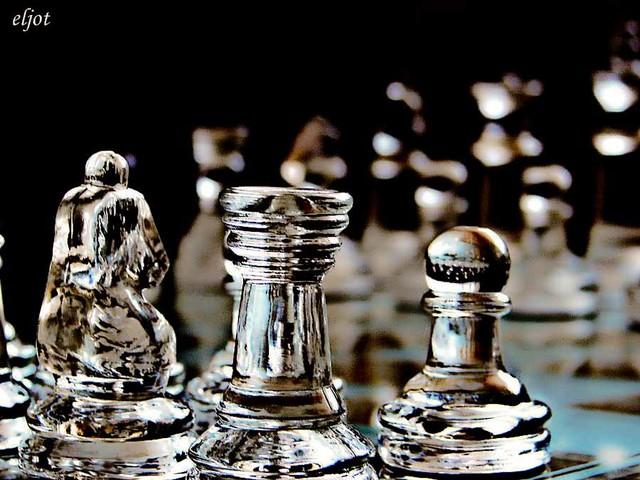 obia szachy lodowe