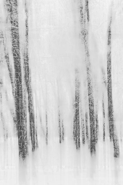 ręce z zimna drżą... Przemek Kijowski Fotograwhy #201816