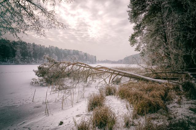 Zima nad jeziorem Rudnickim Krzysztof Tollas #303385