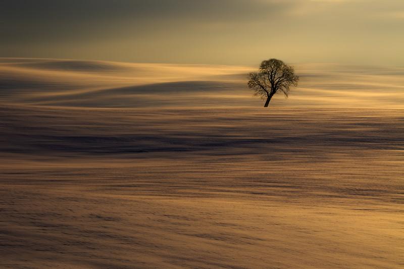 Pawel Bozek|Zima