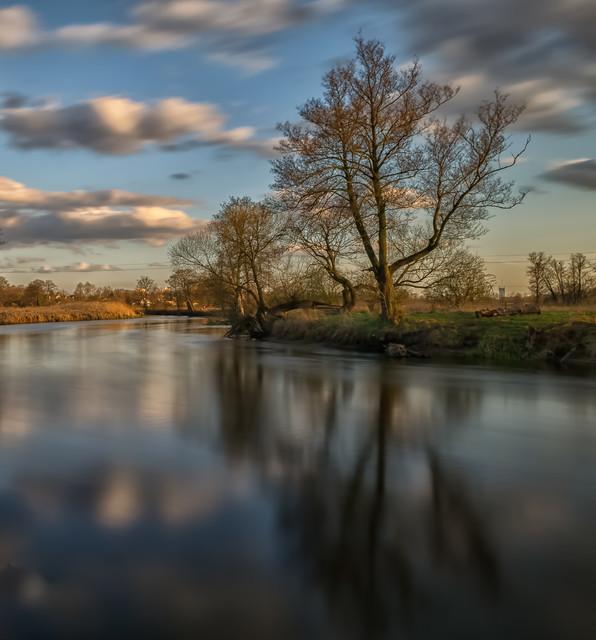 Rzeka Gwda Krzysztof Tollas #305898
