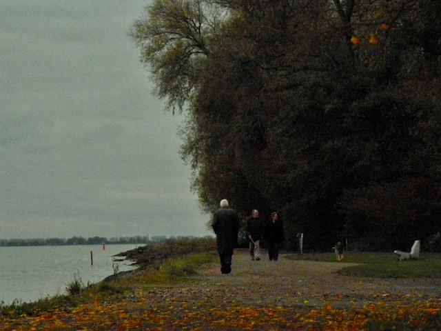 jesień...życia Karmelis #300184