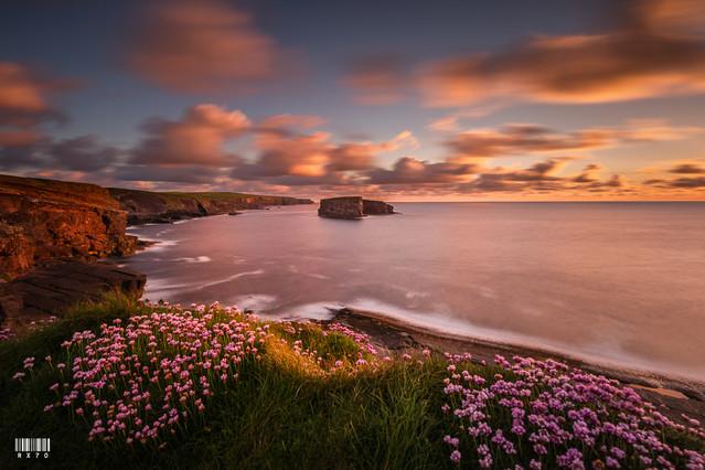 Kilkee Cliffs Ryszard Lomnicki #326119